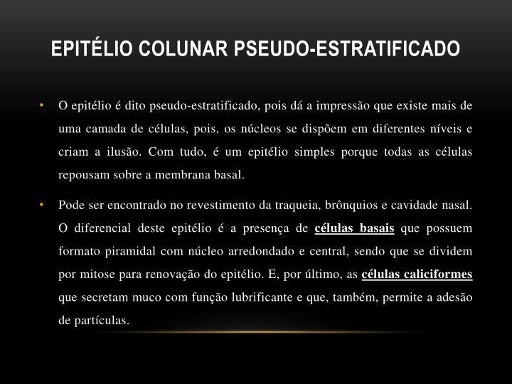 Epitélio Colunar
