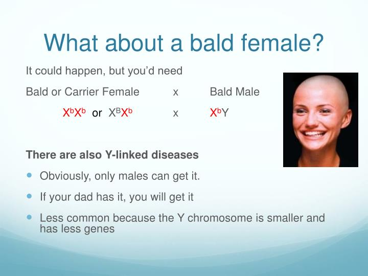 What about a bald female?
