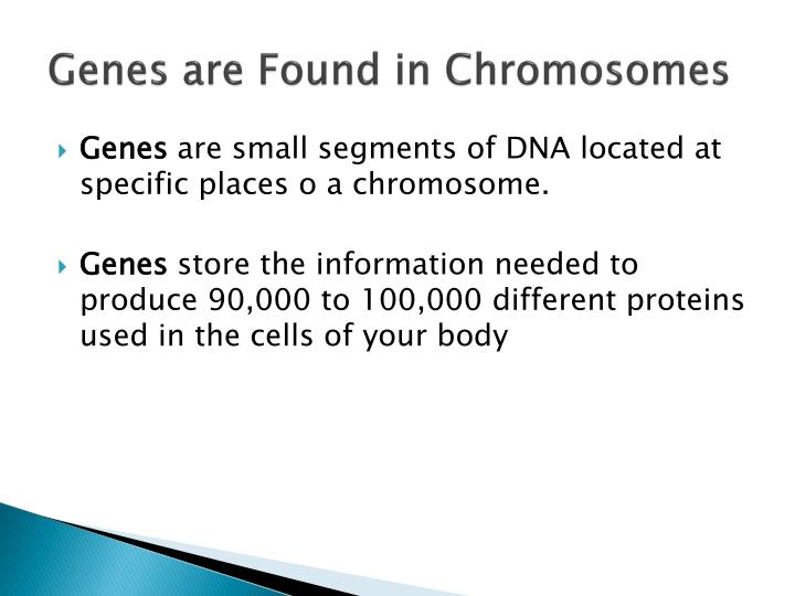 Genes are Found in Chromosomes