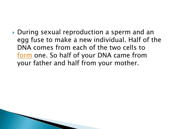 During sexual reproduction a sperm and an egg fuse to make a new individual. Half of the DNA comes from each of the two cells to