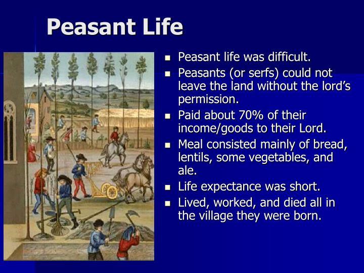 Peasant Life