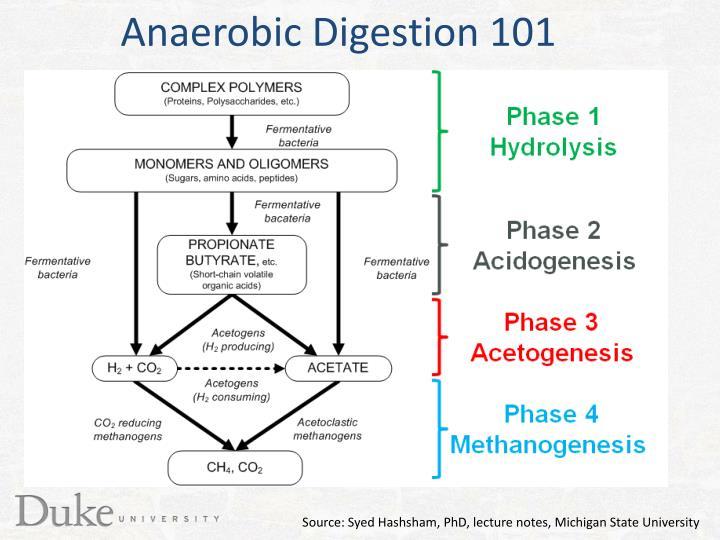 Anaerobic Digestion 101