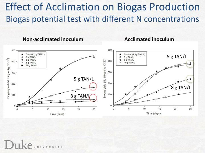 Effect of Acclimation on Biogas Production