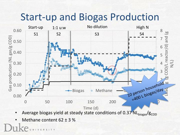 Start-up and Biogas Production