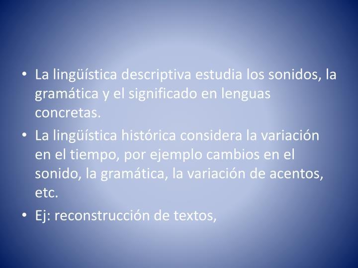 La lingüística descriptiva estudia los sonidos, la gramática y el significado en lenguas concretas.