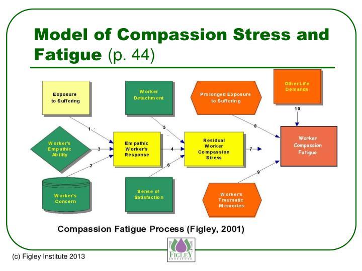 Model of Compassion