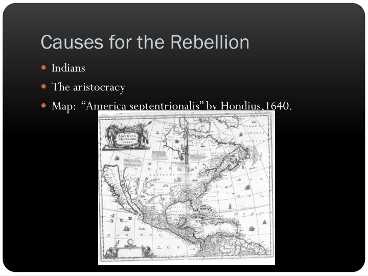 Causes for the Rebellion