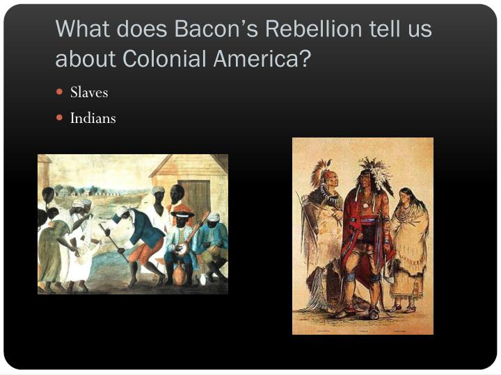 What does Bacon's Rebellion tell us about Colonial America?