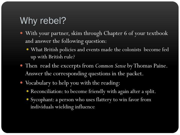 Why rebel?
