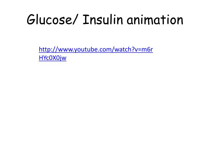 Glucose/ Insulin animation