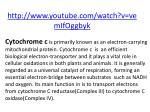 http www youtube com watch v vemifoggbyk