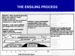 the ensiling process
