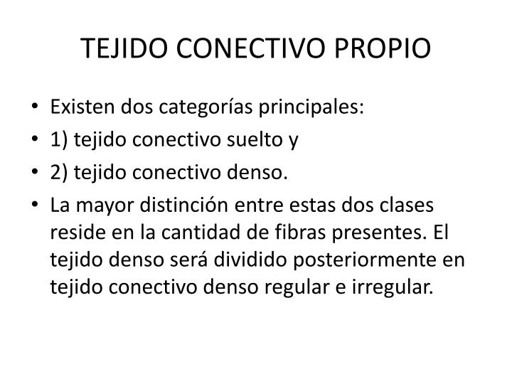 TEJIDO CONECTIVO PROPIO