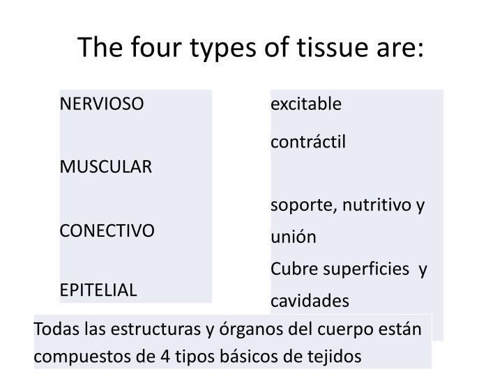 The four types of tissue are