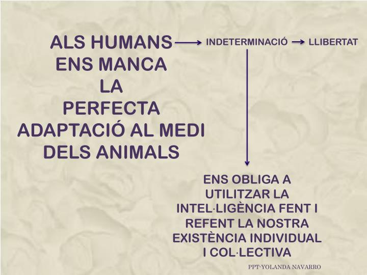 ALS HUMANS