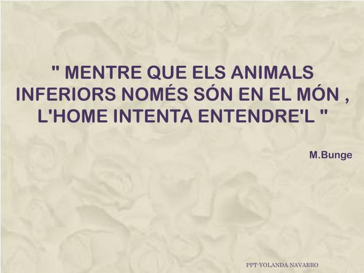 """"""" MENTRE QUE ELS ANIMALS INFERIORS NOMÉS SÓN EN EL MÓN , L'HOME INTENTA ENTENDRE'L """""""