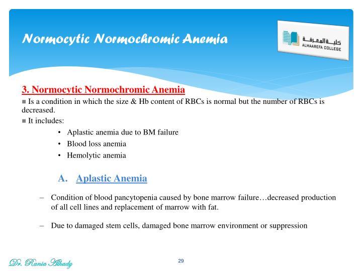 Normocytic