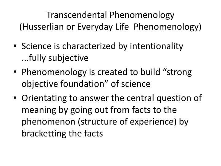 Transcendental Phenomenology
