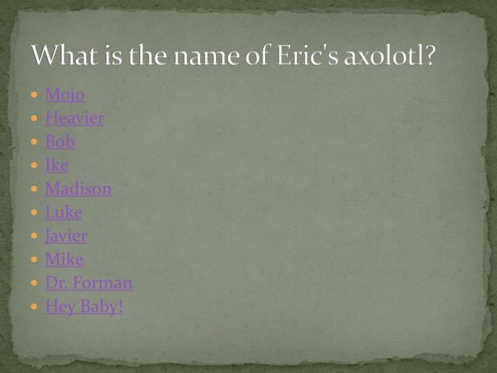 What is the name of Eric's axolotl?