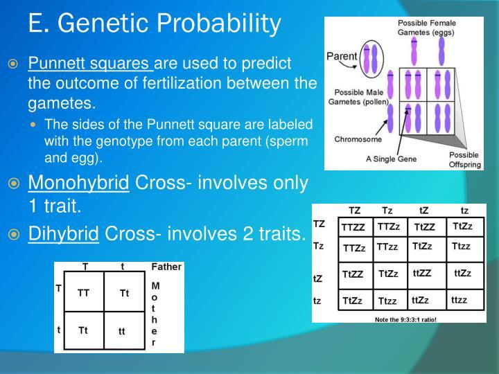 E. Genetic Probability