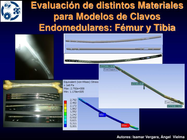 Evaluación de distintos Materiales para Modelos de Clavos Endomedulares: Fémur y Tibia