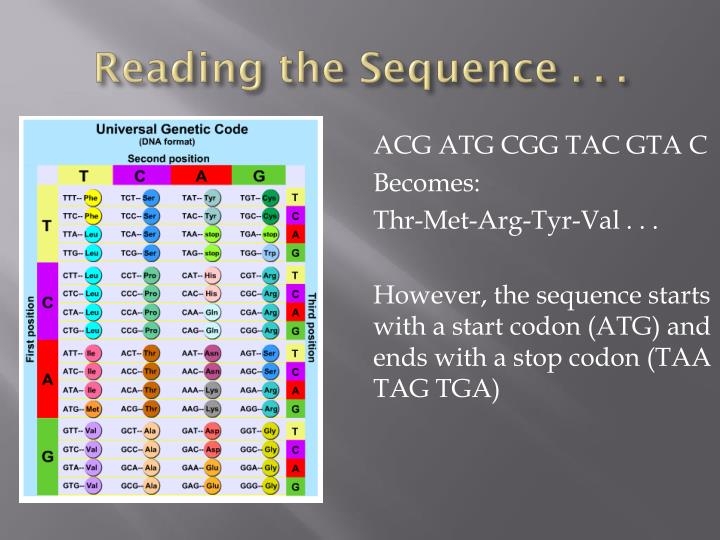 Reading the Sequence . . .