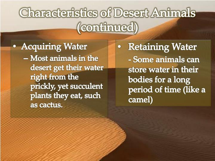 Characteristics of Desert Animals (continued)