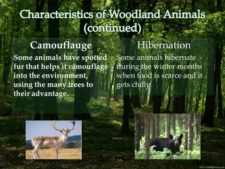 Characteristics of Woodland Animals (continued)