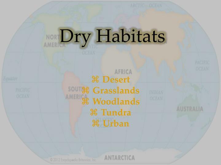 Dry Habitats