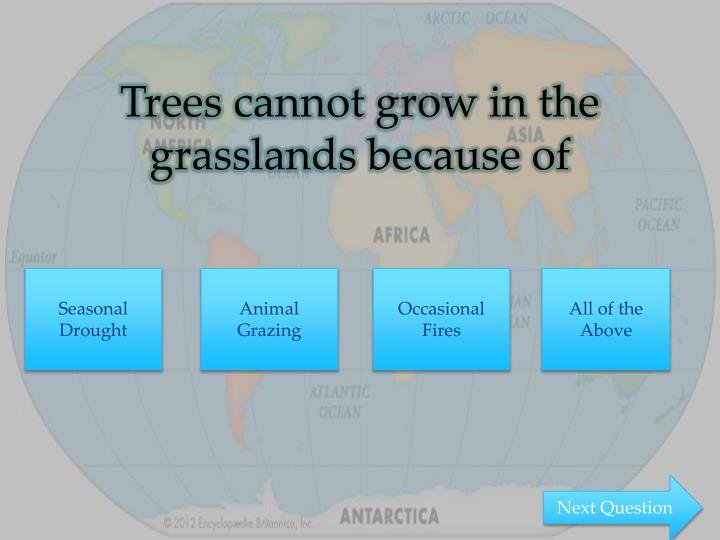 Trees cannot grow in the grasslands because of