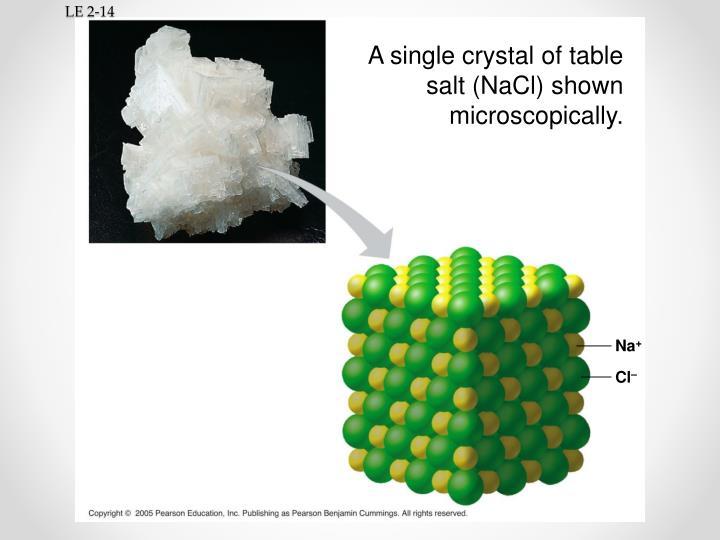 A single crystal of table salt (