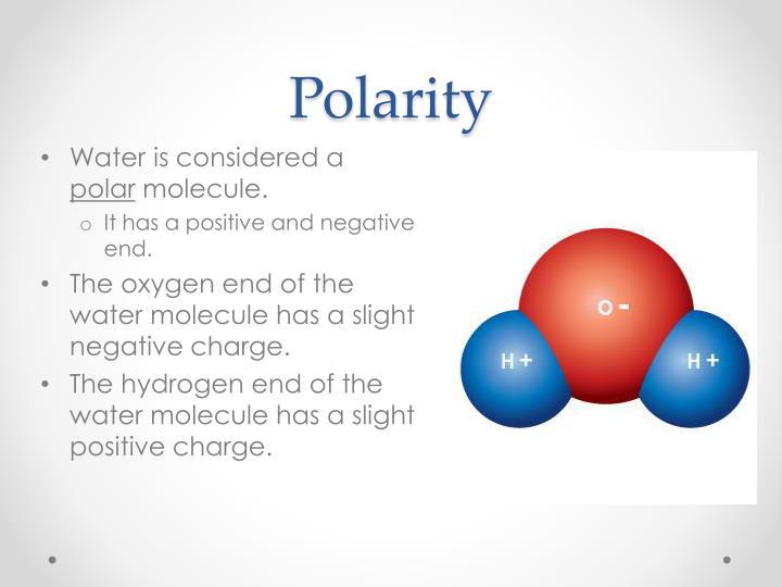 Polarity