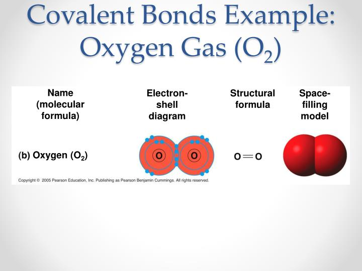 Covalent Bonds Example: Oxygen Gas (O