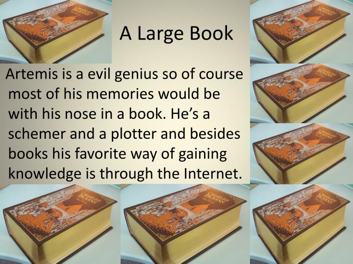 A Large Book