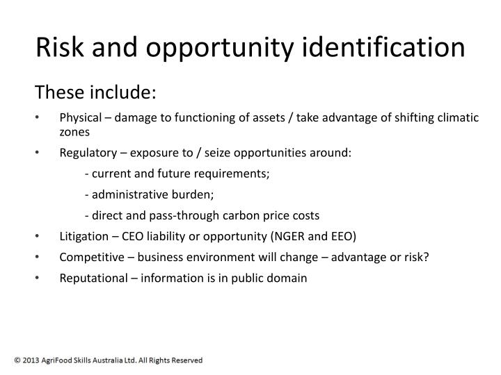 Risk and opportunity identification