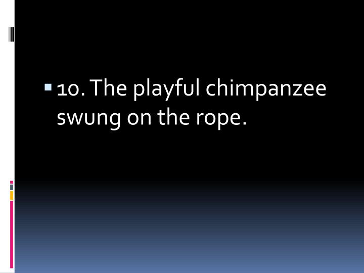 10. The playful chimpanzee swung on the rope.