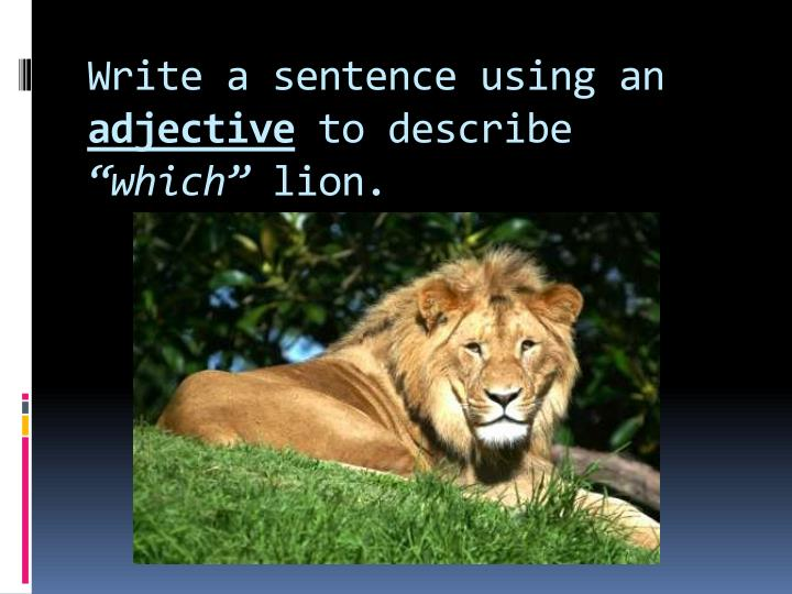 Write a sentence using an
