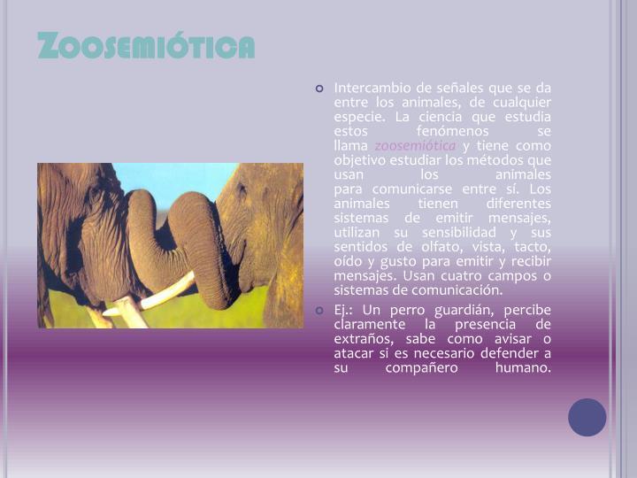 Zoosemiótica