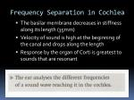 frequency separation in cochlea