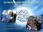 la hermandad musulmana en la actualidad