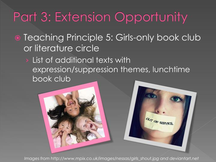 Part 3: Extension Opportunity