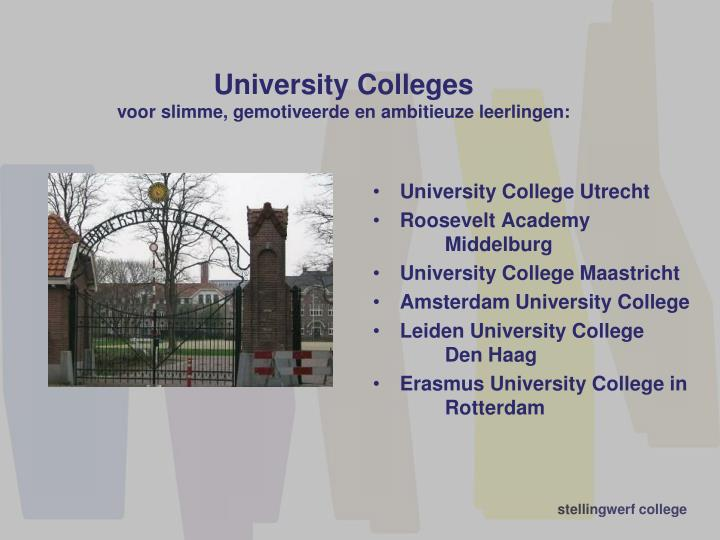 University Colleges