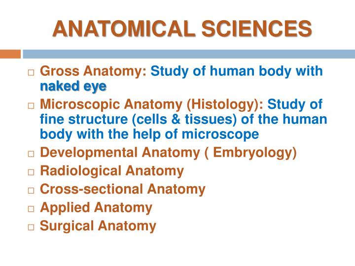ANATOMICAL SCIENCES