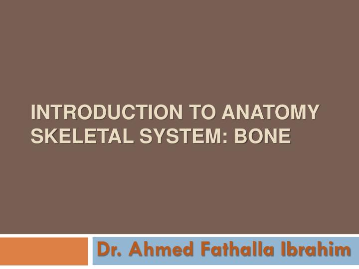 Introduction to anatomy skeletal system bone