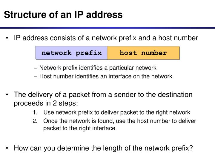 Structure of an IP address