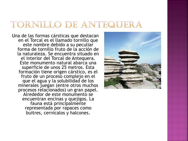 Tornillo de Antequera