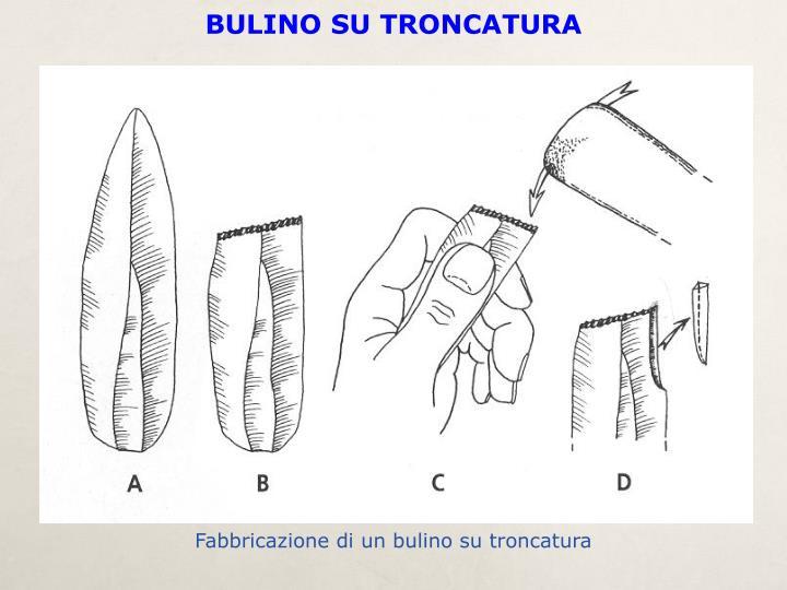BULINO SU TRONCATURA