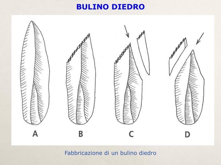 BULINO DIEDRO