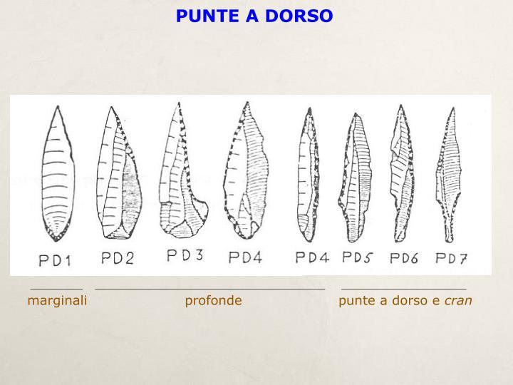 PUNTE A DORSO