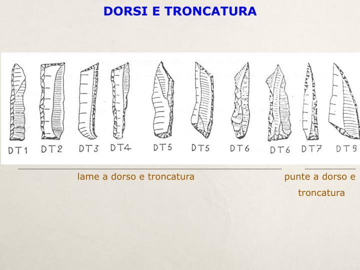 DORSI E TRONCATURA